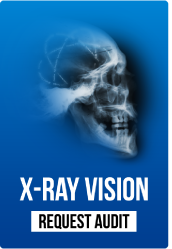 Digitalpaint's free X-ray audit service request button