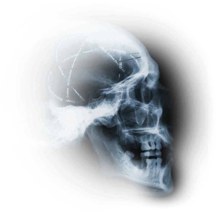 X-ray of a skull with digitalpaint's services written in an atom shape within the brain